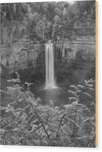 Black And White Taughannock Falls Wood Print