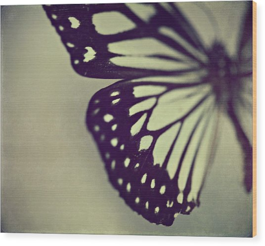 Black And White Wings Wood Print
