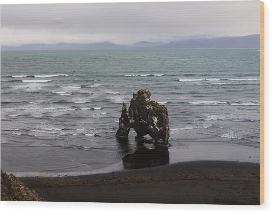 Black Beach And Hvitserkur Wood Print