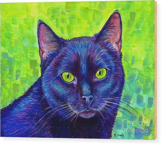 Black Cat With Chartreuse Eyes Wood Print