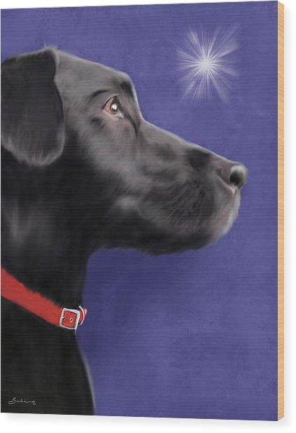 Black Labrador Retriever - Wish Upon A Star  Wood Print
