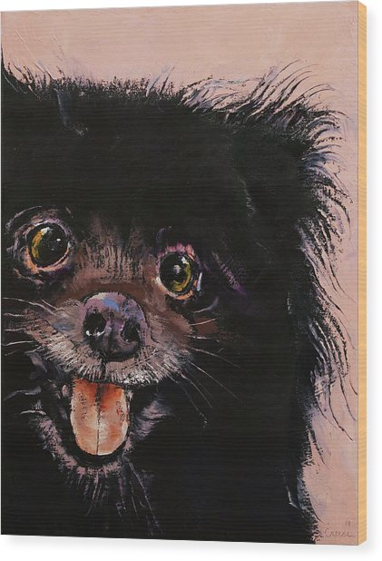 Black Pomeranian Wood Print