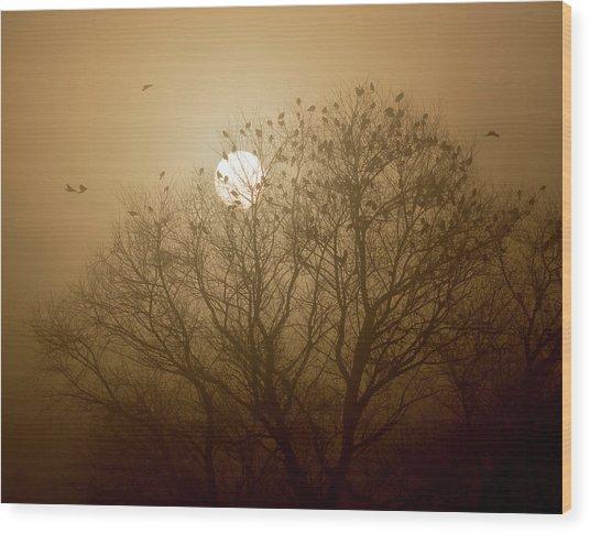 Blackbird Sunrise Wood Print