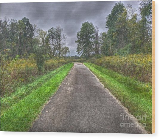 Blacklick Woods Pathway Wood Print