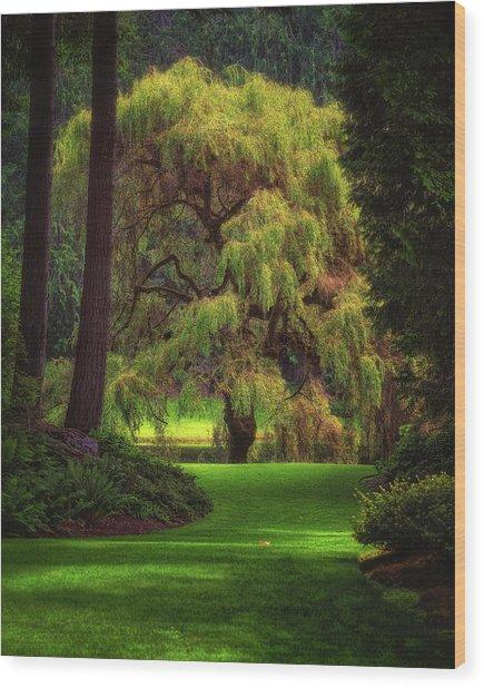 Bloedel Reserve Wood Print
