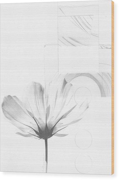 Bloom No. 7 Wood Print