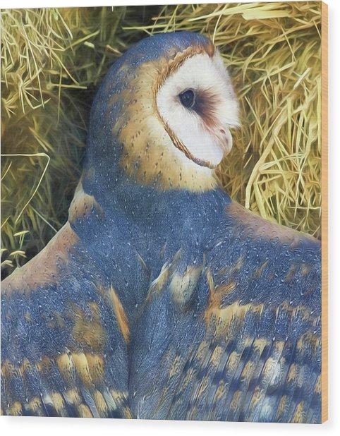 Blue Barn Owl Wood Print