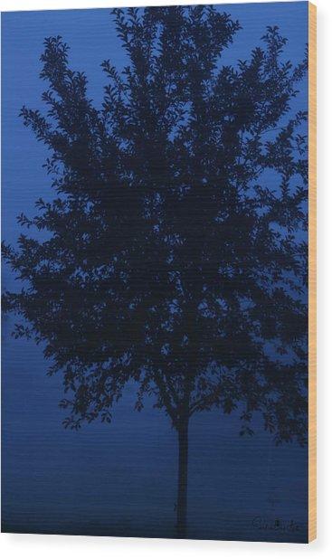 Blue Cherry Tree Wood Print