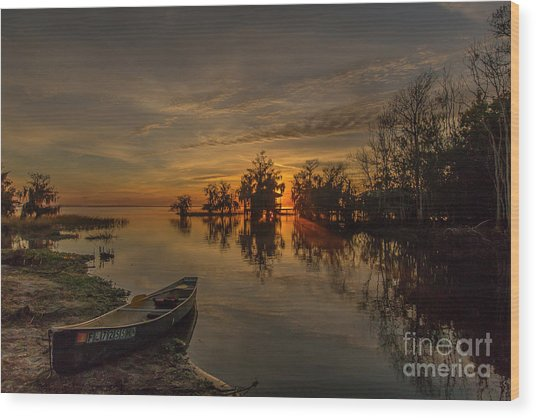 Blue Cypress Canoe Wood Print