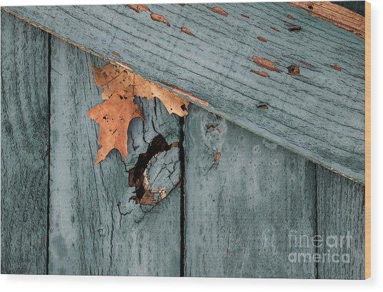 Blue Fence Wood Print