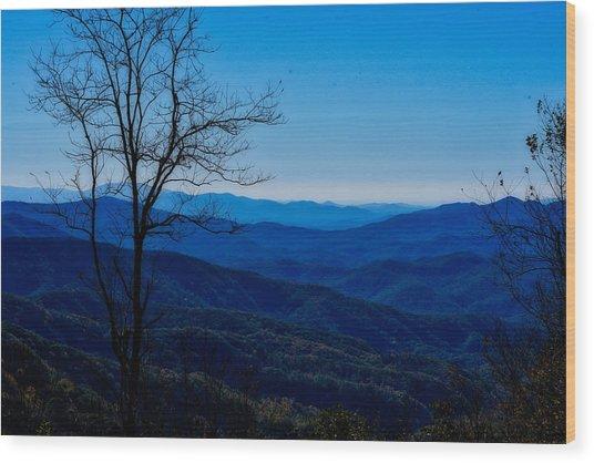 Blue Wood Print