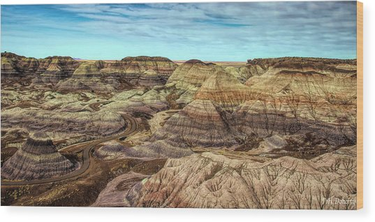 Blue Mesa Pathway Wood Print