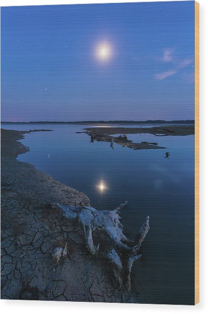 Wood Print featuring the photograph Blue Moonlight by Davor Zerjav