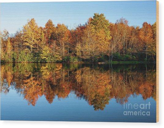 Blue Ridge Parkway Autumn Mirror Image Wood Print by Dan Carmichael