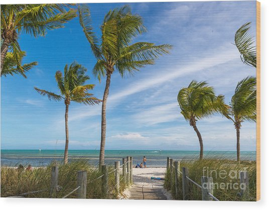 Blue Sky With White Sand And Palm Beach Wood Print