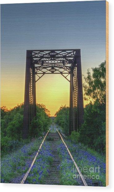 Bluebonnets On The Abandoned Railroad Wood Print