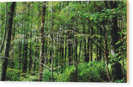 Blueridgemts_4047_18 Wood Print