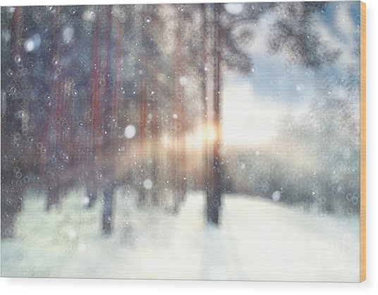 Blurred Background Forest Snow Winter Wood Print