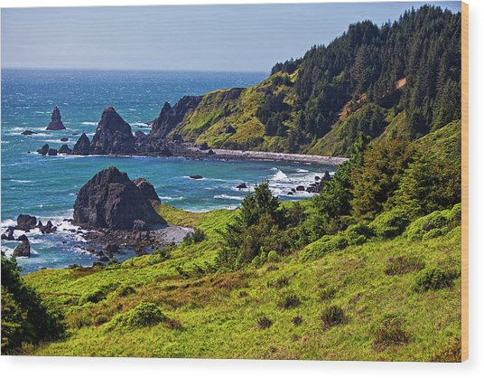 Boardman State Park In Southern Oregon Wood Print