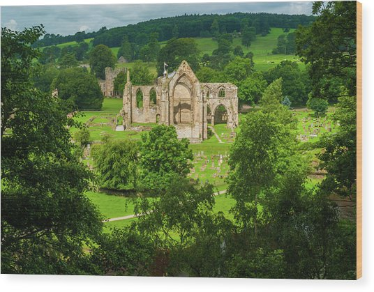 Bolton Abbey, Yorkshire Dales Wood Print by David Ross