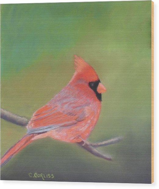 Bonded Pair - Male Cardinal Wood Print