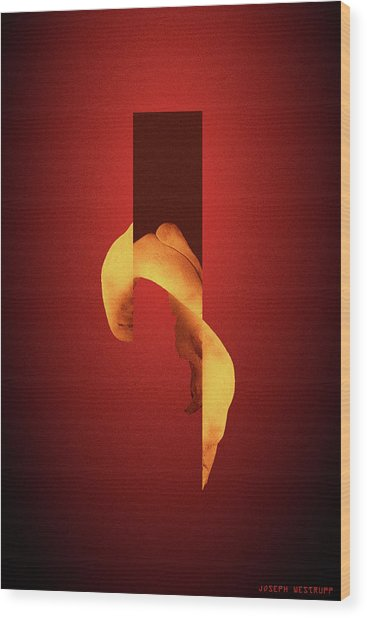Bone Flare - Surreal Abstract Elephant Bone Collage With Rectangle Wood Print