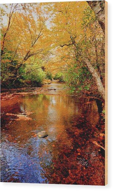 Boone Fork Stream Wood Print