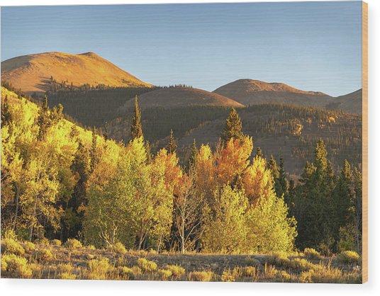 Boreas Mountain Wood Print