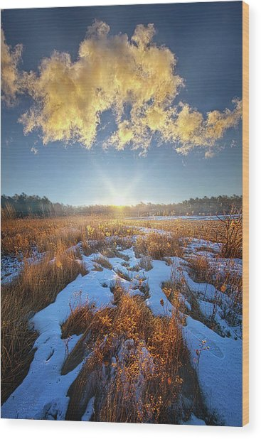 Wood Print featuring the photograph Bound Within The Silence by Phil Koch