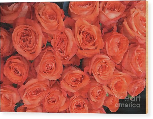 Bouquet Of The  Living Coral Roses Wood Print