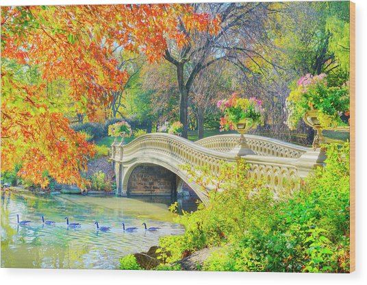 Bow Bridge, Central Park, In Autumn Wood Print by Mitchell Funk