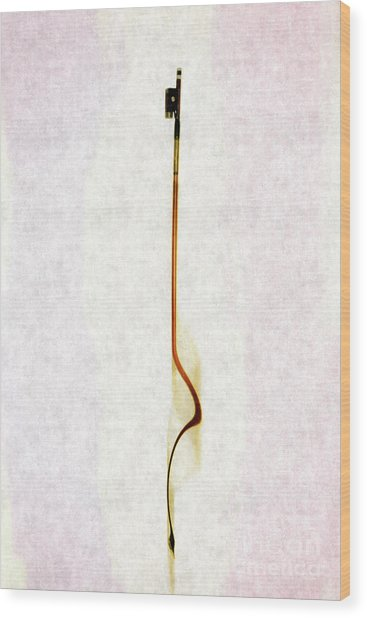 Bow In Abstract Camber Wood Print by Steven Digman