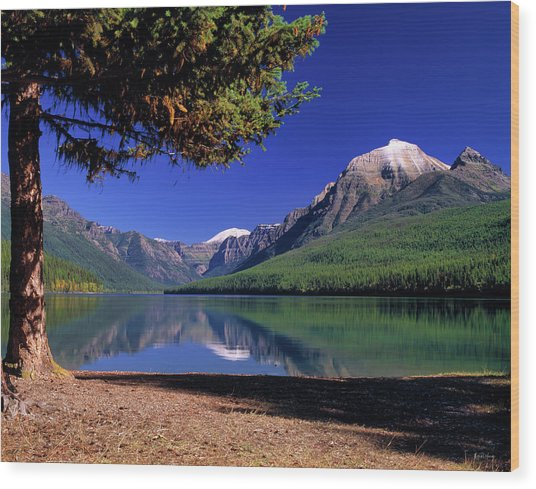 Bowman Lake Wood Print