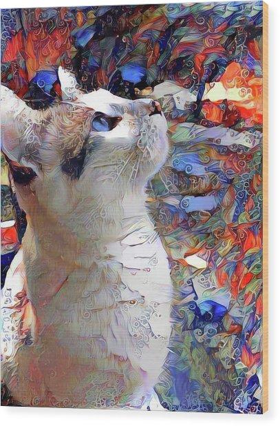Brady The Half Siamese Half Tabby Cat Wood Print