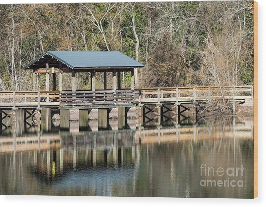Brick Pond Park - North Augusta Sc Wood Print