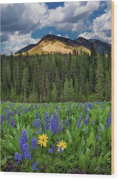 Bridger Teton National Forest Wood Print by Leland D Howard