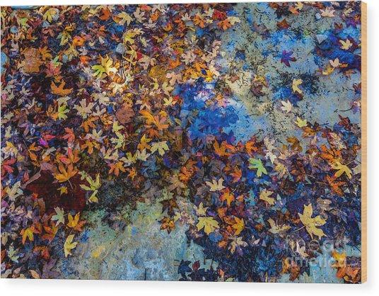 Bright Beautiful Fall Foliage Floating Wood Print