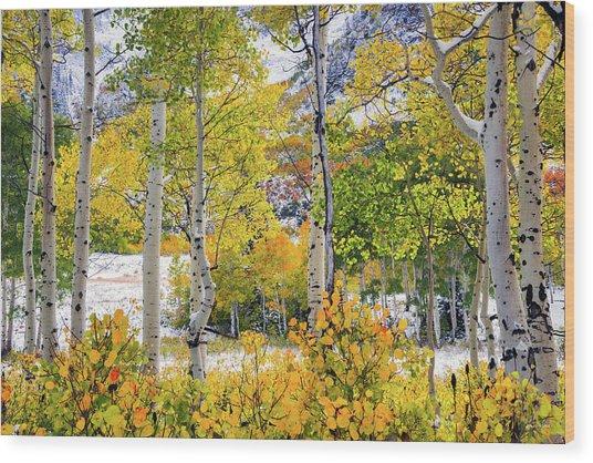 Brilliant Autumn Wood Print by Leland D Howard