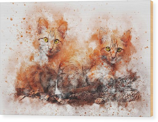 Brothers Cat Wood Print