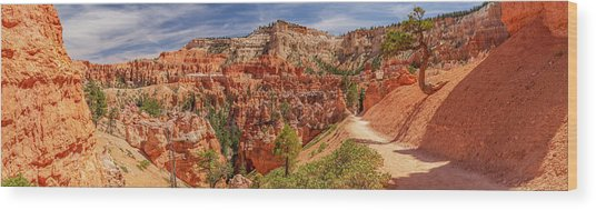 Bryce Canyon Np - Peek-a-boo Canyon Wood Print