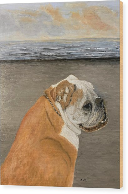 Bulldog  On The Beach Wood Print