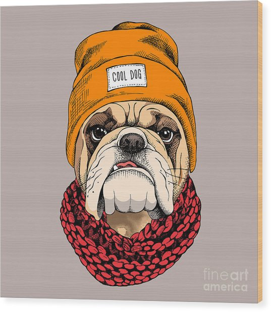 Bulldog Portrait In A Hipster Hat And Wood Print