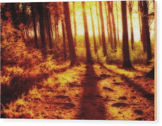 Burning Forest Wood Print