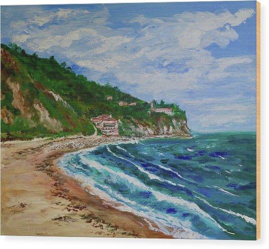 Burnout Beach, Redondo Beach California Wood Print