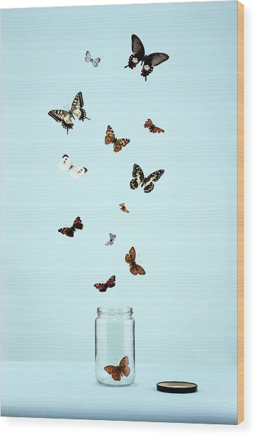 Butterflies Escaping From Jar Wood Print by Martin Poole