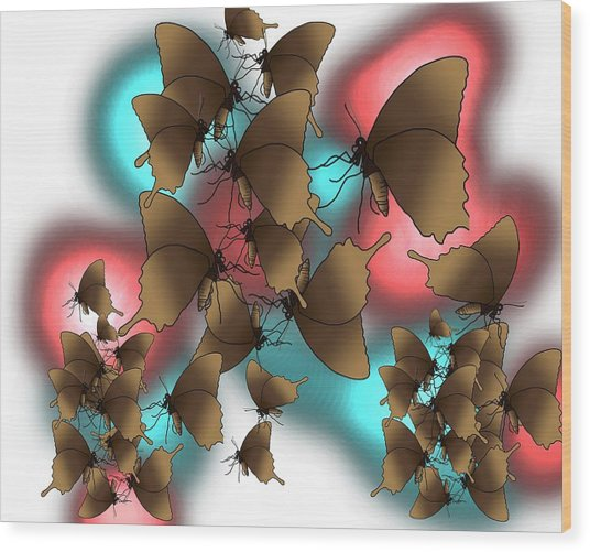 Butterfly Patterns 11 Wood Print