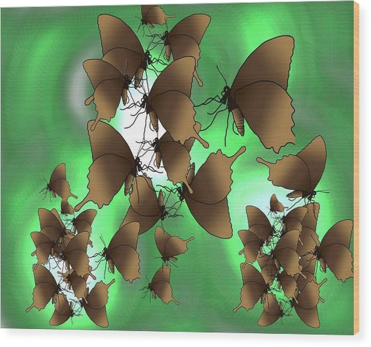 Butterfly Patterns 15 Wood Print