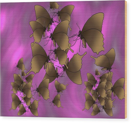 Butterfly Patterns 17 Wood Print