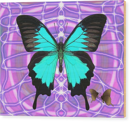 Butterfly Patterns 19 Wood Print