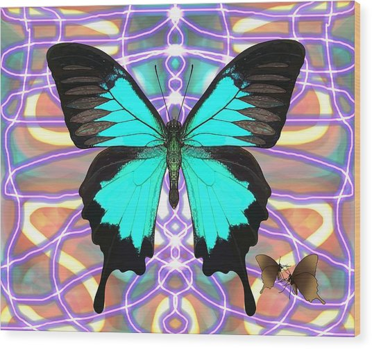 Butterfly Patterns 20 Wood Print